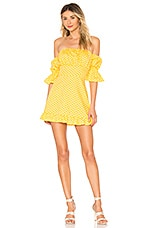 Tularosa Angie Dress in Pineapple