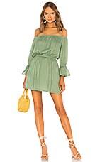 Tularosa Luna Dress in Mint Green
