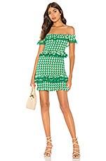 Tularosa Teri Dress in Kelly Green