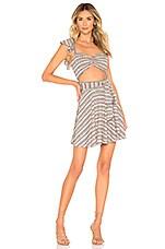 Tularosa Masa Dress in Sage Multi Stripe