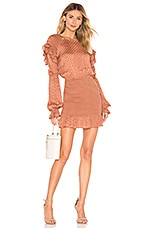 Tularosa Edie Dress in Copper