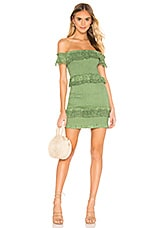 Tularosa Teri Dress in Mint Green