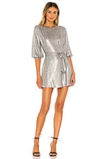 Tularosa Dries Dress in Silver