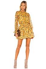 Tularosa Camden Dress in Golden Rose Floral