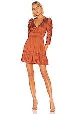 Ulla Johnson Luisa Dress in Rust