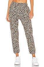 Velvet by Graham & Spencer Bristol Jogger in Leopard