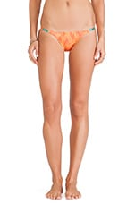 Menfis Detail Bikini Bottom in Orange
