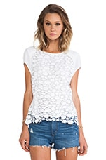 Eternal Lace Top in White
