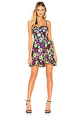 X by NBD Jacquelyn Dress in Multicolor