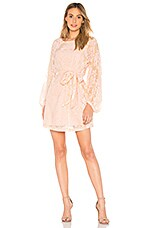 Yumi Kim Bellflower Dress in Blush