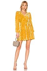 Yumi Kim Royalty Dress in Gold Velvet Burnout