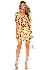 Yumi Kim Golden Hour Dress in Sunnyside Dress