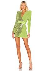 Zhivago Adenine Dress in Lime
