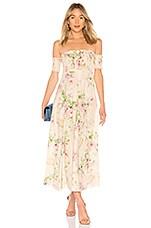 Zimmermann Iris Shirred Bodice Maxi Dress in Cream Floral