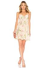 Zimmermann Iris Sun Dress in Cream Floral