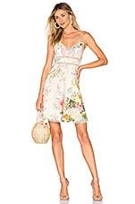 Zimmermann Heathers Sun Dress in Garden Floral