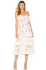 Zimmermann Heathers Pintuck Long Dress in Floating Bouquet