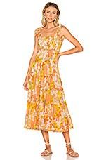 Zimmermann Primrose Crinkle Tie Dress in Marigold Floral