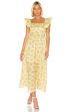 Zimmermann Goldie Ruffle Neck Long Dress in Citrus Floral