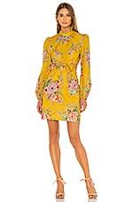 Zimmermann Zinnia Bow Cut Out Short Dress in Golden Floral