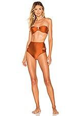 Zimmermann Primrose Underwire Flower Bikini Set in Rust