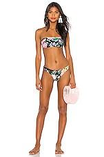 Zimmermann Allia Bandeau Bikini Set in Black Floral