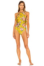 Zimmermann Zinnia Halter Frill One Piece in Golden Floral
