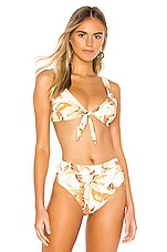 ZULU & ZEPHYR Dusk Leaf Bikini Top in Palm Leaf Print