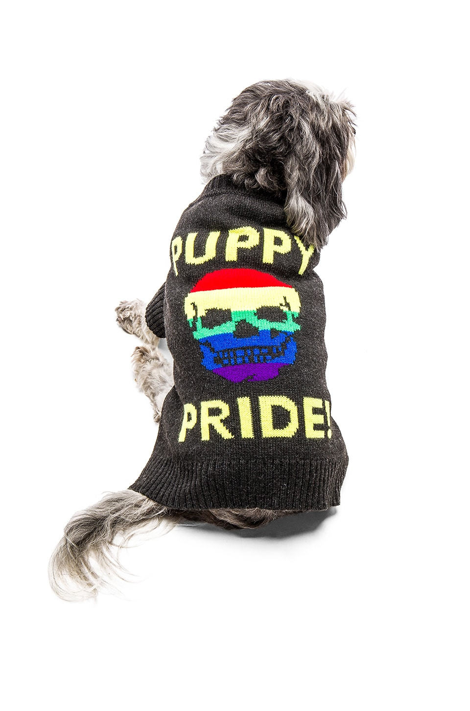 360CASHMERE Puppy Pride Dog Sweater in Charcoal & Rainbow