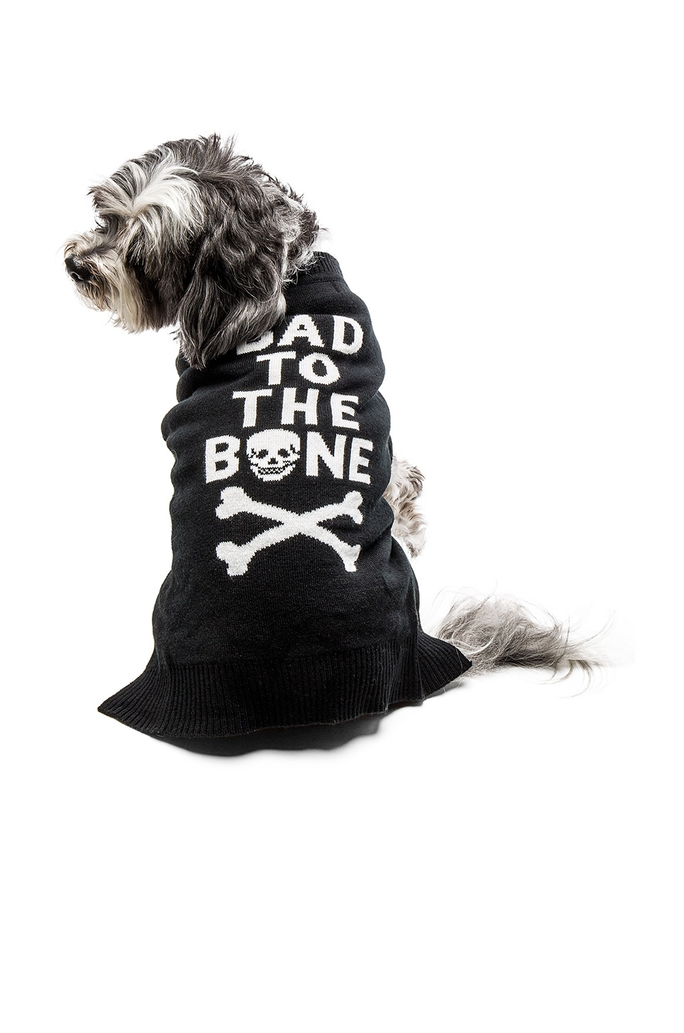 Bad To The Bone Dog Sweater by 360Cashmere