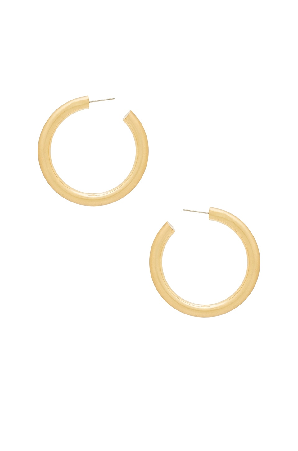 8 Other Reasons Holly Hoops in Gold