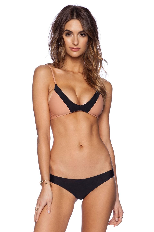 Acacia Swimwear Pupukea Bikini Top in Topless