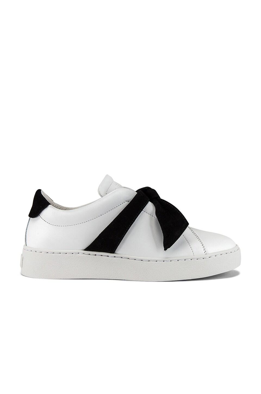 Alexandre Birman Sneakers Clarita Sneaker