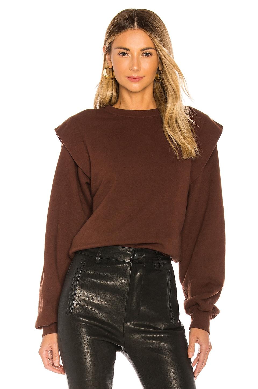 AGOLDE 80's Sweatshirt in Pumpernickel