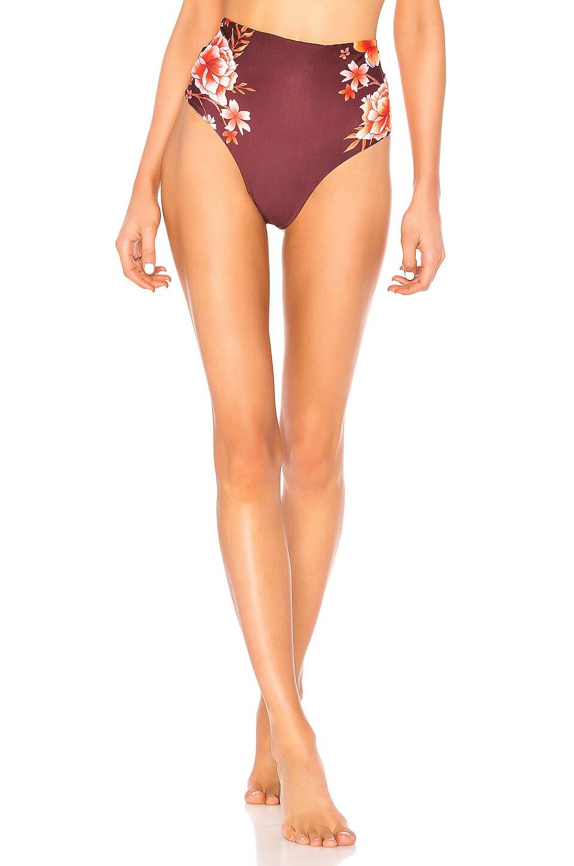 Agua Bendita Alicia Reversible Bikini Bottom in Cocoa