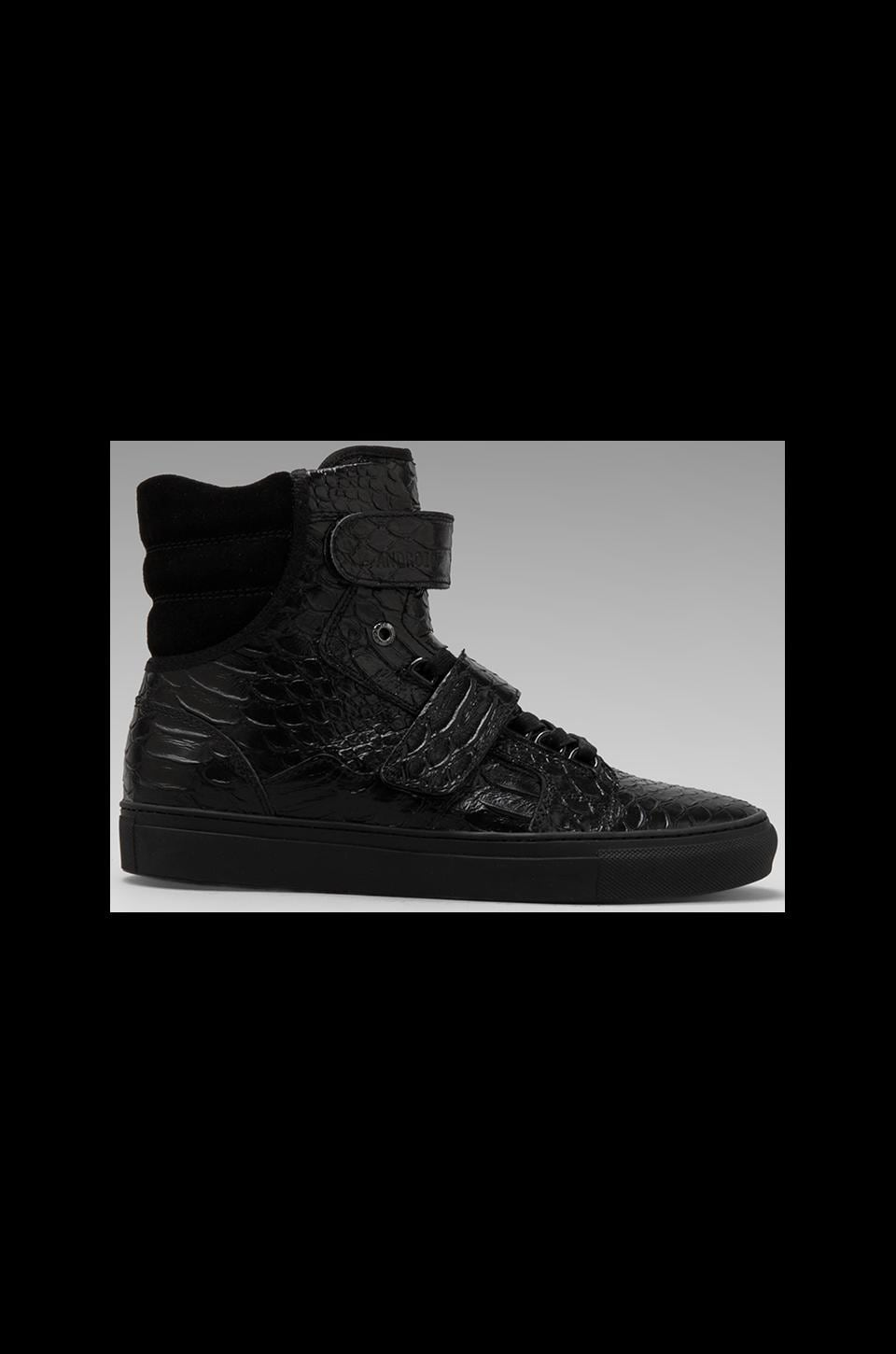 Android Homme Propulsion Hi in Black Python