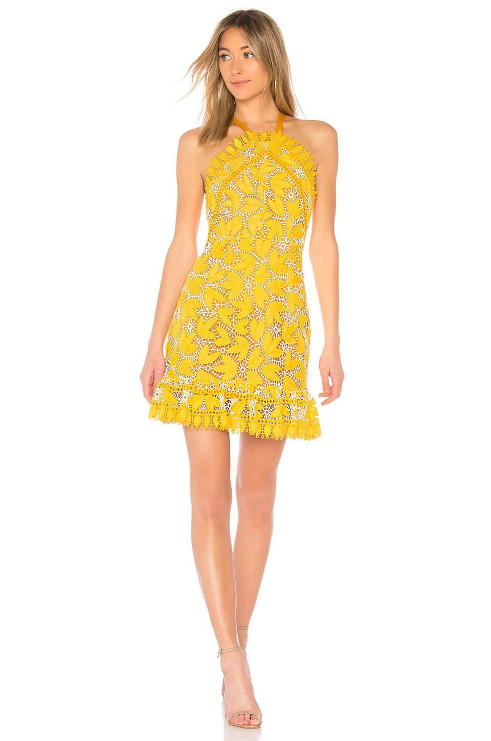 aijek Marianna Halter Dress in Yellow
