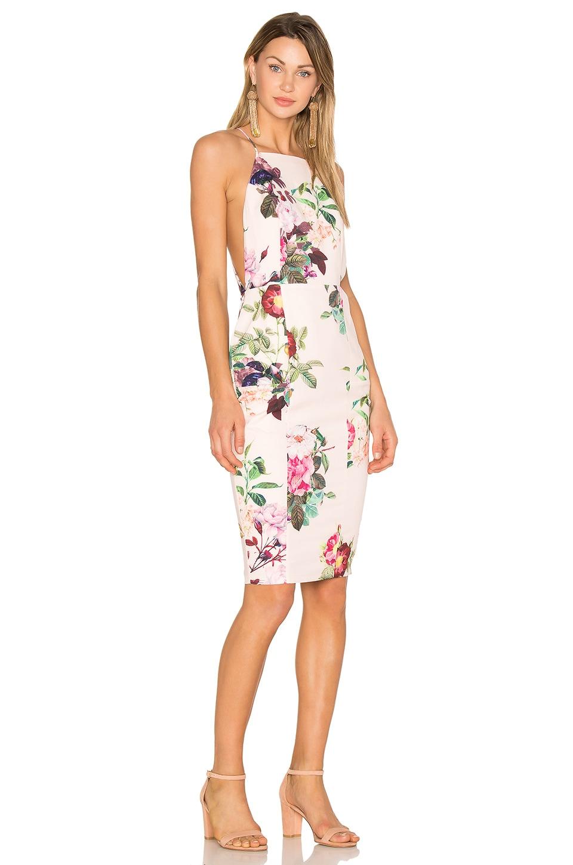 AIRLIE Isolla Bella Midi Dress in Pink Print