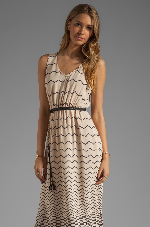 Akiko Print Maxi Dress in Abacus Print