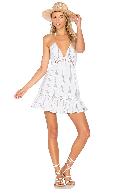 ale by alessandra Elisa Dress in Ivory & Navy