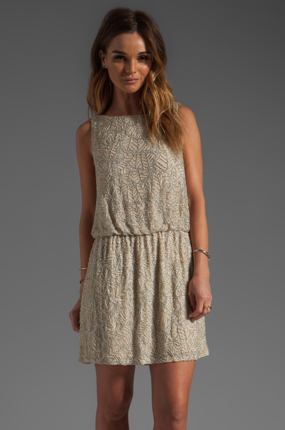 Alice + Olivia Nora Dropped Waist Beaded Dress in Antique