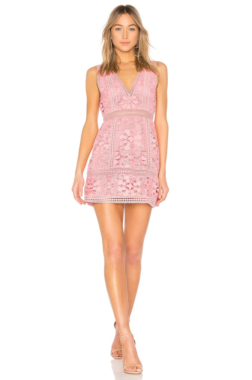 Alice + Olivia Zula Lace Dress in Blossom