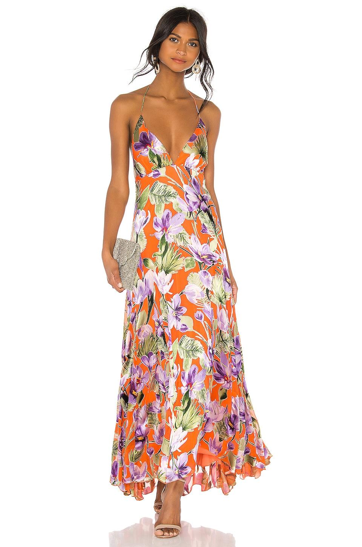 Alice + Olivia Hetty Halter Neck Maxi Dress in Floral Palm Coral