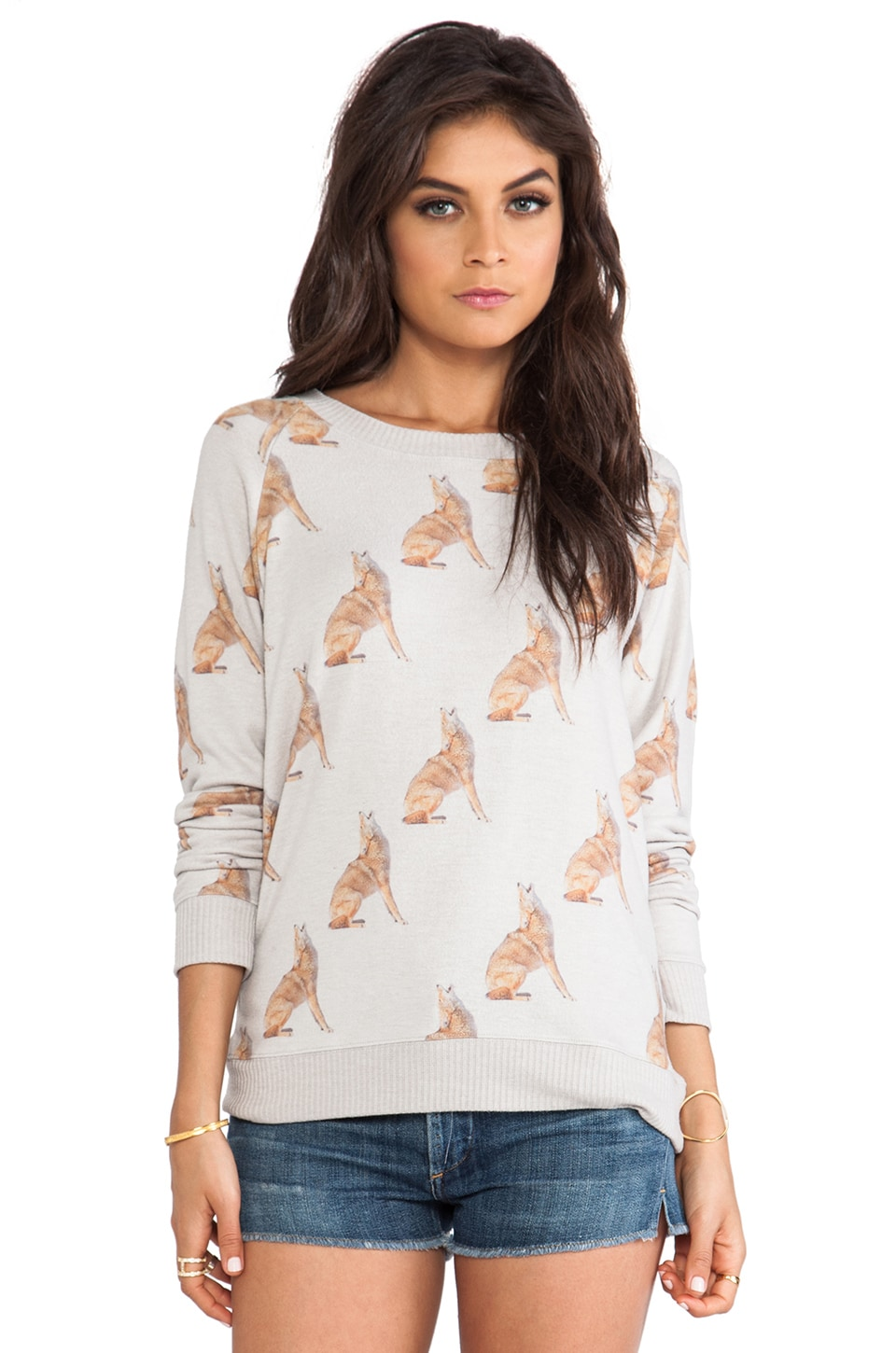 All Things Fabulous Coyote Cozy Pullover in Gray