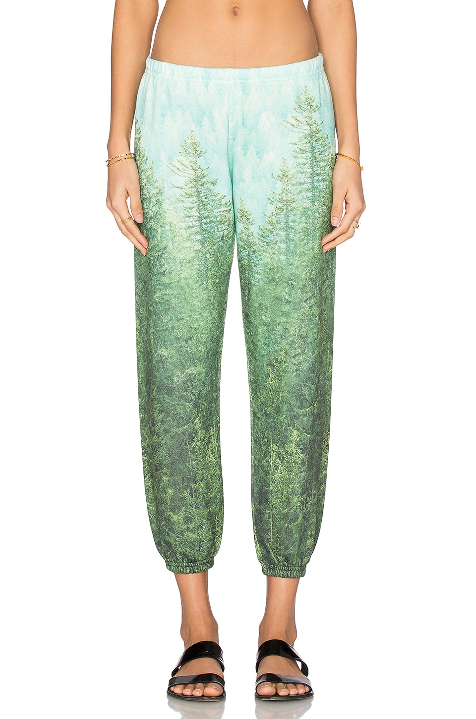 All Things Fabulous Sweatpant in Pine Forest