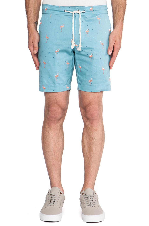Altru Flamingo Shorts