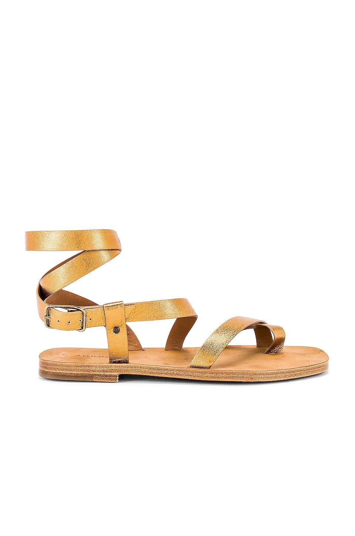 ALUMNAE Gladiator Capri Sandal in Bronze & Oak