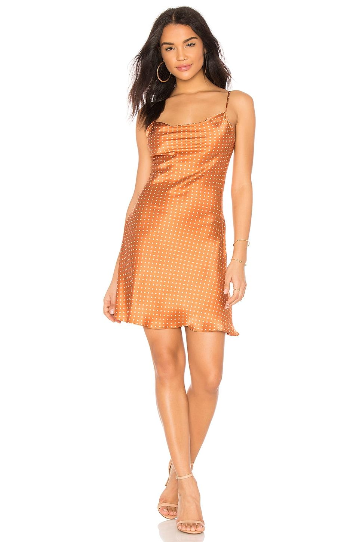 Amanda Uprichard X REVOLVE Noella Slip Dress in Rust & Ivory Polka Dot