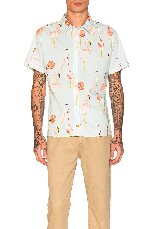 Mingo Shirt by Ambsn
