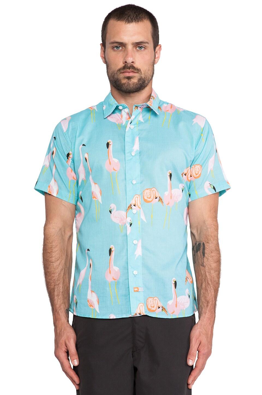Ambsn Mingo Shirt in Aqua